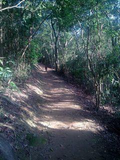 Path 8