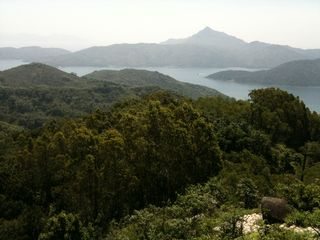 View from Lookout Wong Shek
