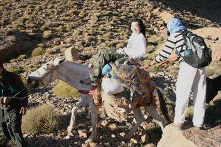Elizabeth on her mule