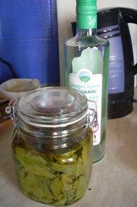Beech Leaf Noyau Gin Jar