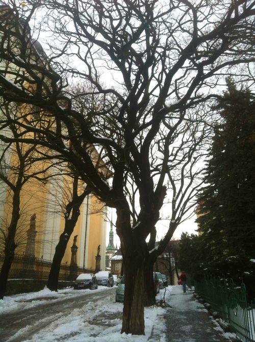 Outside St Michael's