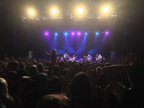 Iggy Crowd