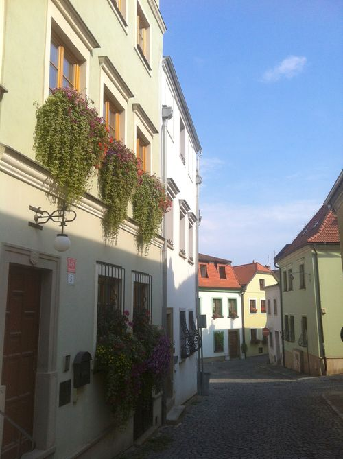 Summer Olomouc
