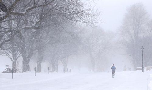 Snowy Reuters Shot