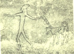 Cave Drawing Pet