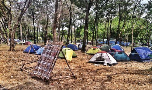 Lumphini Park 1