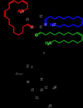 Transfat